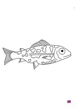 Coloriages d'animaux - Jeune saumon