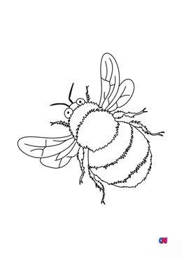 Coloriages d'animaux - Une abeille