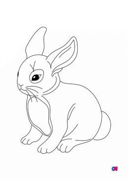 Coloriages d'animaux - Un joli petit lapin