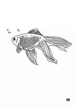 Coloriages d'animaux - petit poisson